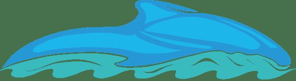 Motos agua en TENERIFE 1